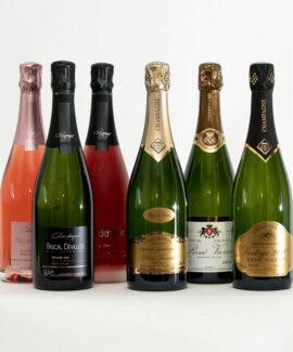 Champagne - smagekasser