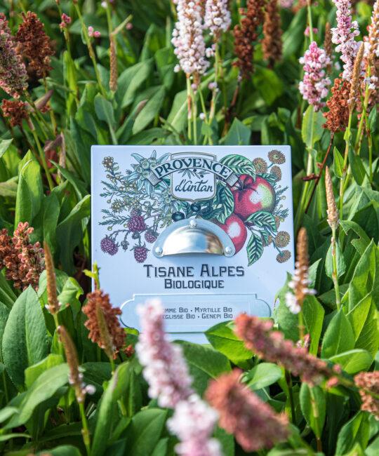 Tisane Alpes økologisk vegansk glutenfri te